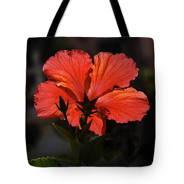Tote Bag featuring the photograph Backlit Hibiscus by Robert Bales