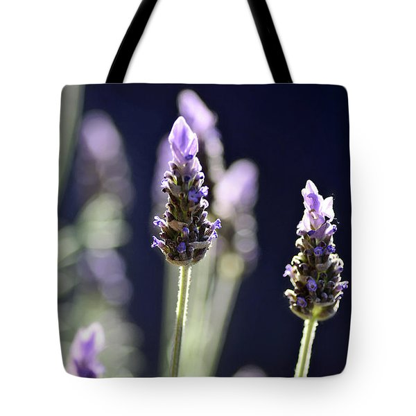 Tote Bag featuring the photograph Backlit Lavender By Kaye Menner by Kaye Menner
