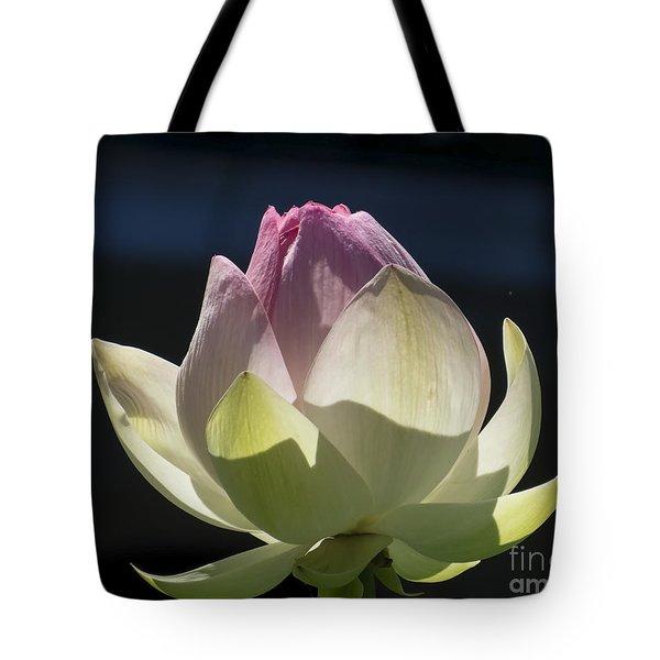 Backlit Lotus Bud 2015 Tote Bag