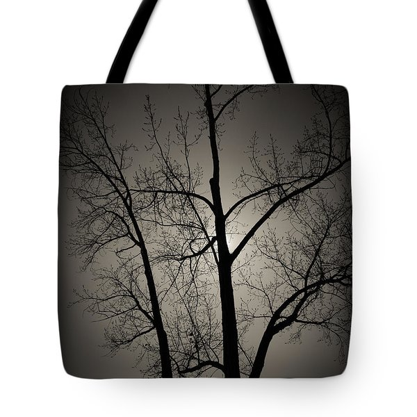 Backlit Trees Tote Bag