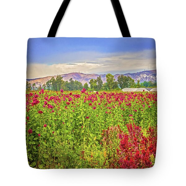 Backroad Beauty In Southern California Tote Bag