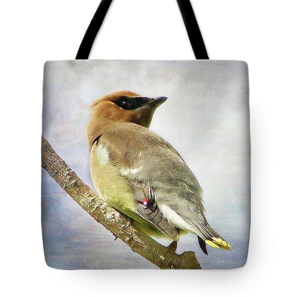 Backward Glance Tote Bag