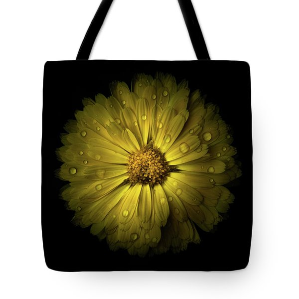 Backyard Flowers 10 Color Version Tote Bag