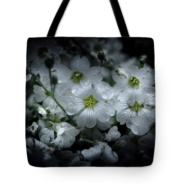 Backyard Flowers 51 Color Version Tote Bag