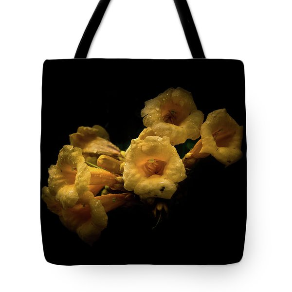Backyard Flowers 63 Color Version Tote Bag