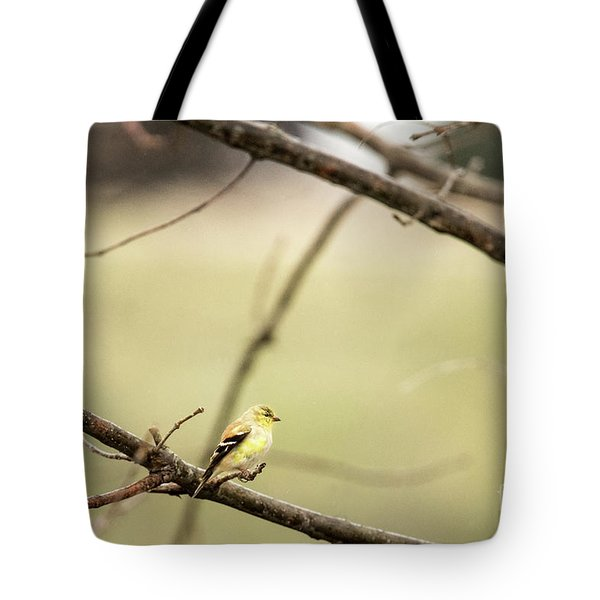 Backyard Yellow Tote Bag