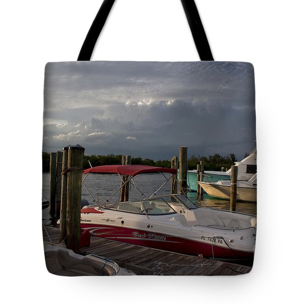 Bad Kitty Tote Bag by Ivete Basso Photography