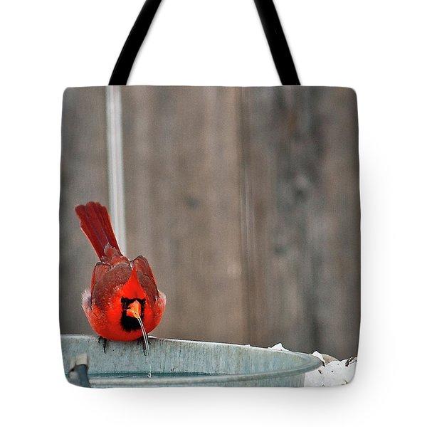 Bad Water Tote Bag