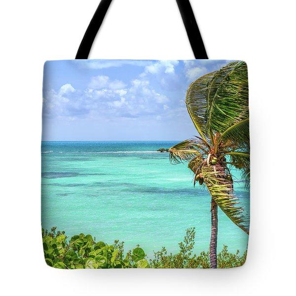 Bahia Honda State Park Atlantic View Tote Bag by John M Bailey