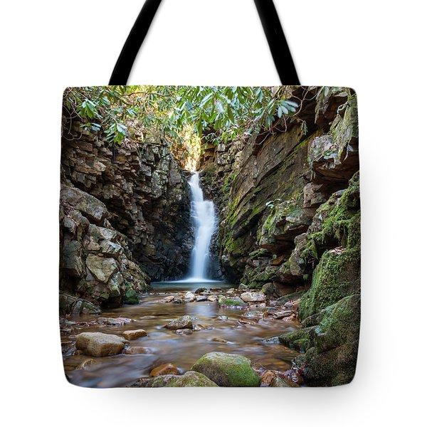Baileys Falls Tote Bag