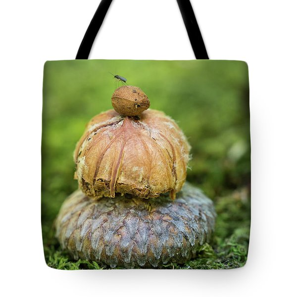 Tote Bag featuring the photograph Balance With Nature by Dale Kincaid
