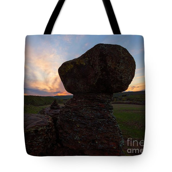 Tote Bag featuring the photograph Balanced by Mike Dawson