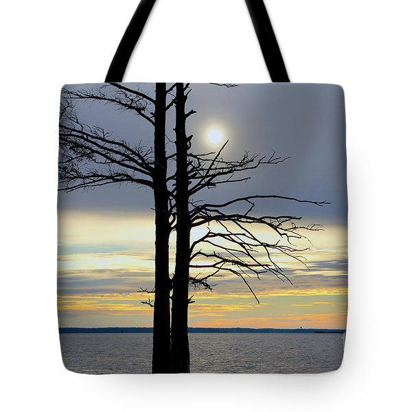 Bald Cypress Silhouette Tote Bag