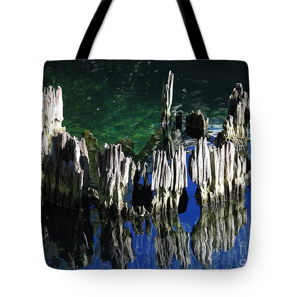 Bald Cypress Stump Tote Bag