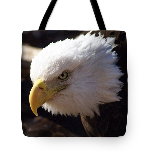 Bald Eagle 2 Tote Bag by Marty Koch