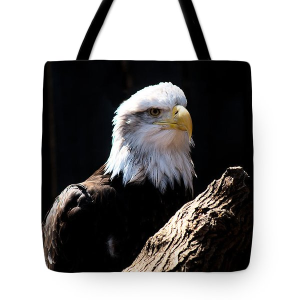 Tote Bag featuring the photograph Bald Eagle Wil 272 by G L Sarti