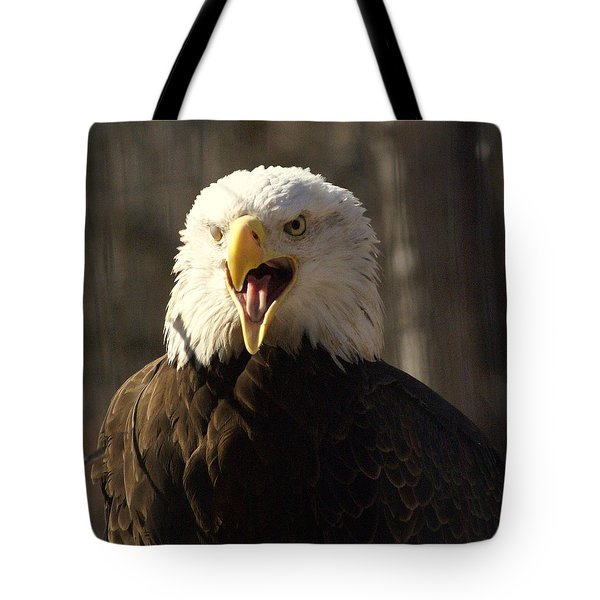 Bald Eagle 4 Tote Bag by Marty Koch