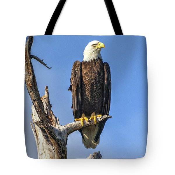 Tote Bag featuring the photograph Bald Eagle 6366 by Tommy Patterson