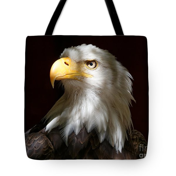 Bald Eagle Closeup Portrait Tote Bag