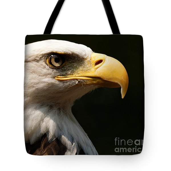 Bald Eagle Delight Tote Bag