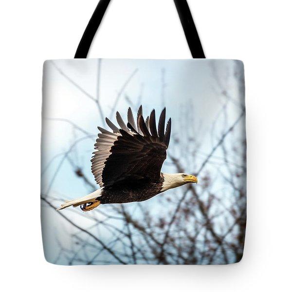 Bald Eagle Flight Tote Bag
