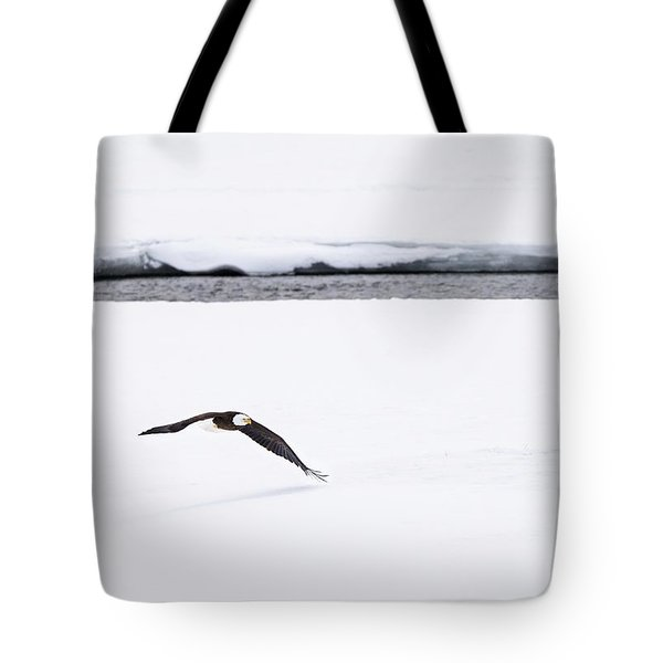 Bald Eagle Fly By Tote Bag by Brad Scott