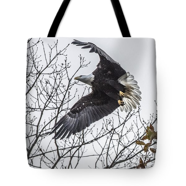 Bald Eagle Flying Tote Bag