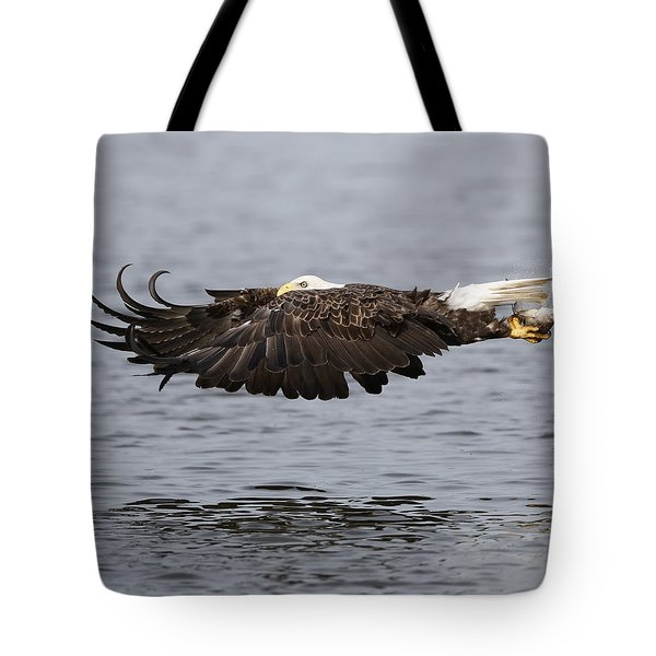 Bald Eagle Flying With Fish Tote Bag