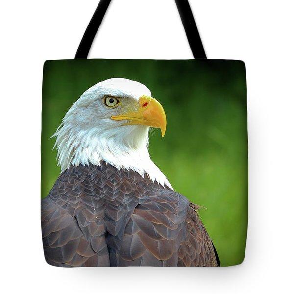 Bald Eagle Tote Bag by Franziskus Pfleghart