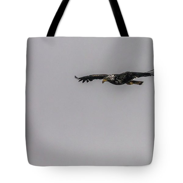 Bald Eagle Gliding Tote Bag