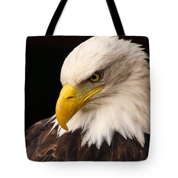 Bald Eagle Head Tote Bag by David Warrington