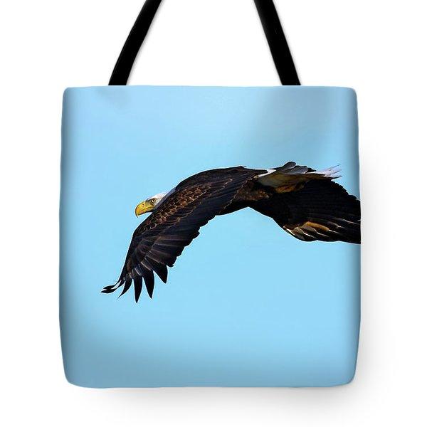 Bald Eagle Horizons Tote Bag