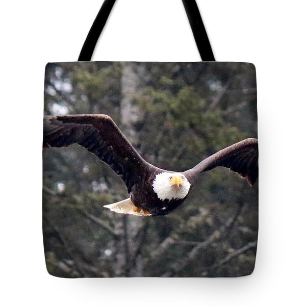 Bald Eagle In Flight - 2 Tote Bag by Christy Pooschke