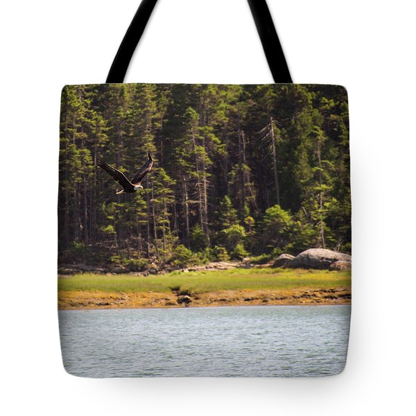 Bald Eagle In Flight Tote Bag