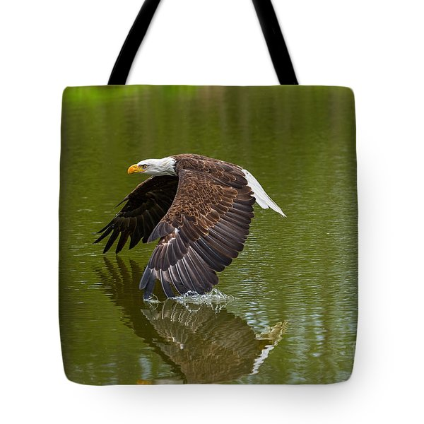 Bald Eagle In Low Flight Over A Lake Tote Bag