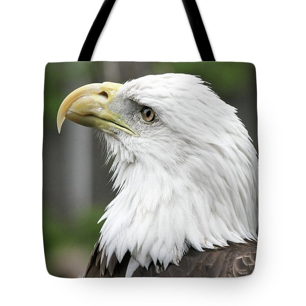 Tote Bag featuring the photograph Bald Eagle by Jackson Pearson