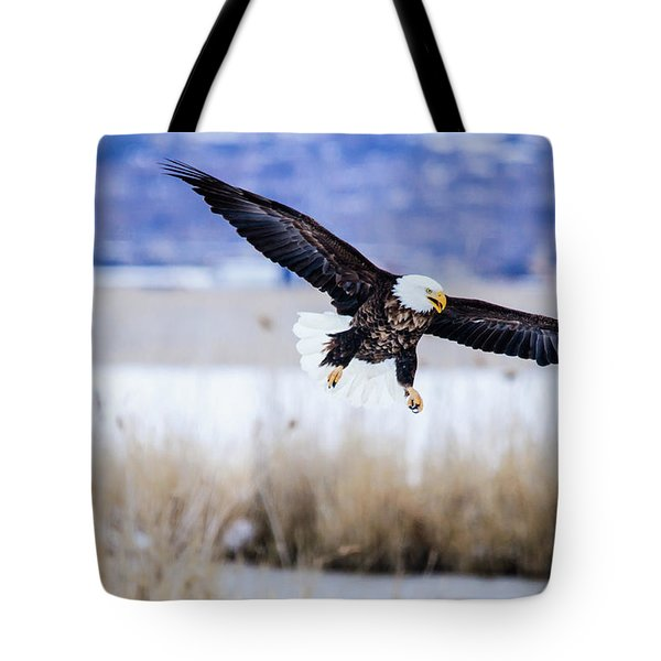 Tote Bag featuring the photograph Bald Eagle Landing by Bryan Carter