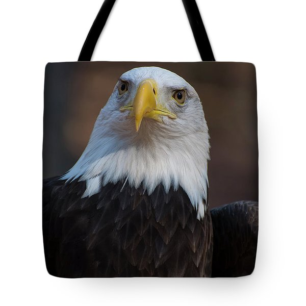 Bald Eagle Looking Right Tote Bag