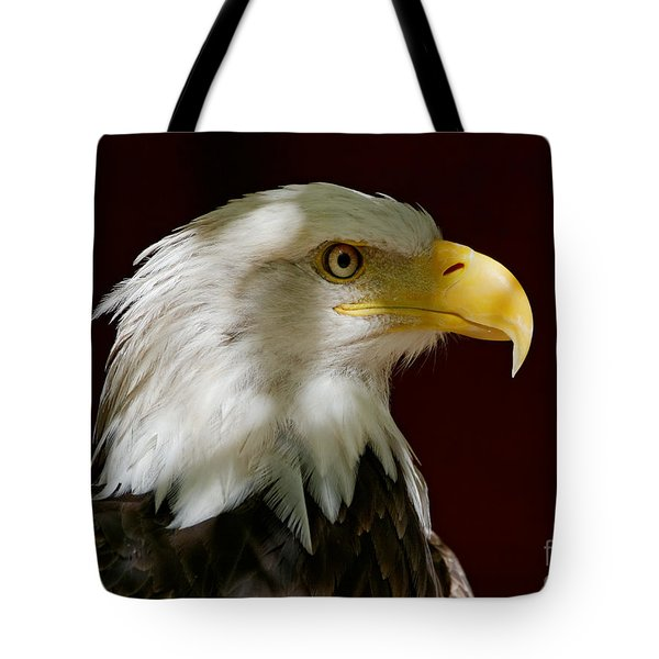 Bald Eagle - Majestic Portrait Tote Bag