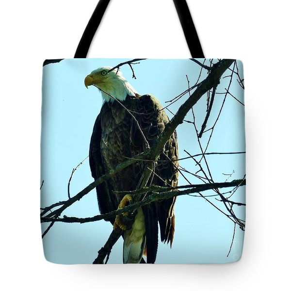 Bald Eagle Over The Root River Tote Bag