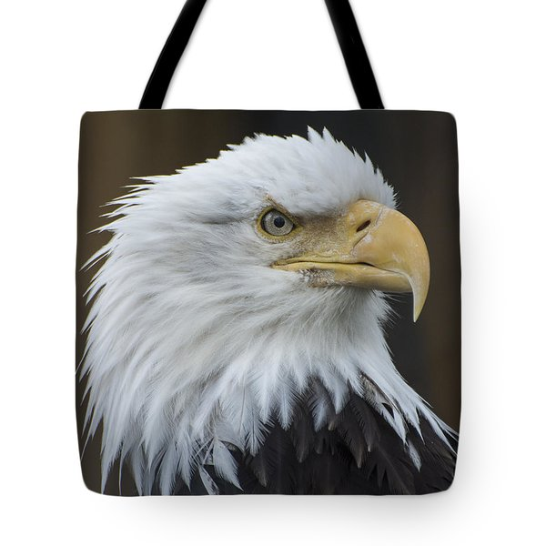 Bald Eagle Portrait Tote Bag by Gary Lengyel