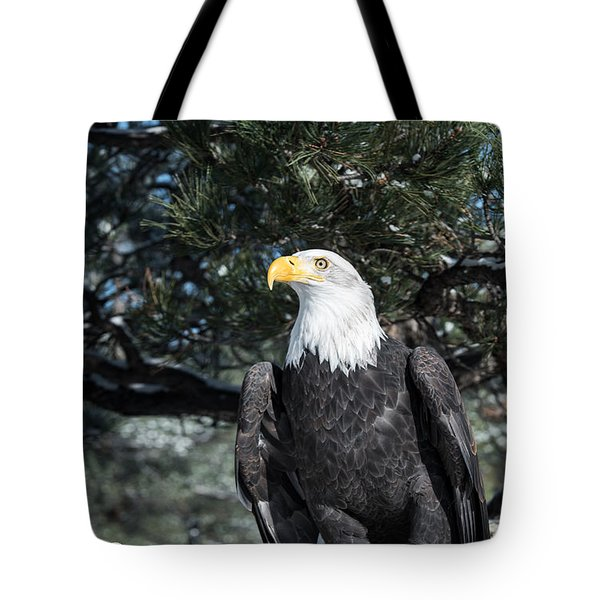 Bald Eagle Ready For Flight Tote Bag