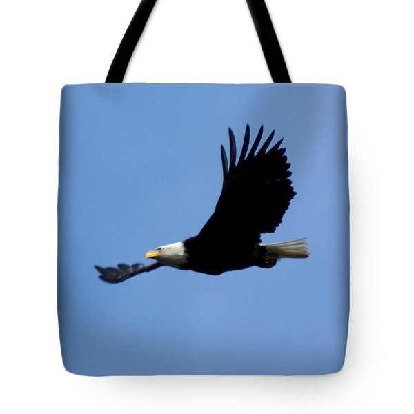 Bald Eagle Soaring High Tote Bag by Ben Upham III