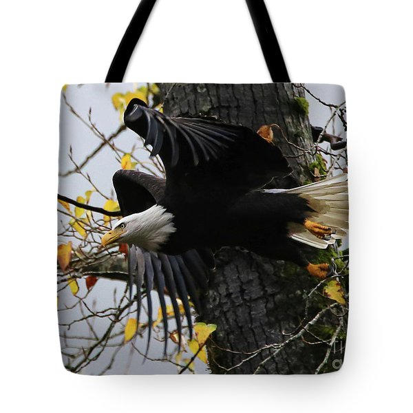 Bald Eagle Takes Flight Tote Bag