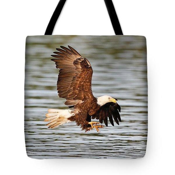 Bald Eagle Talons Tote Bag