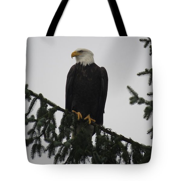 Bald Eagle Watching Tote Bag
