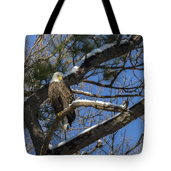 Bald Eagle Watching Her Domain Tote Bag