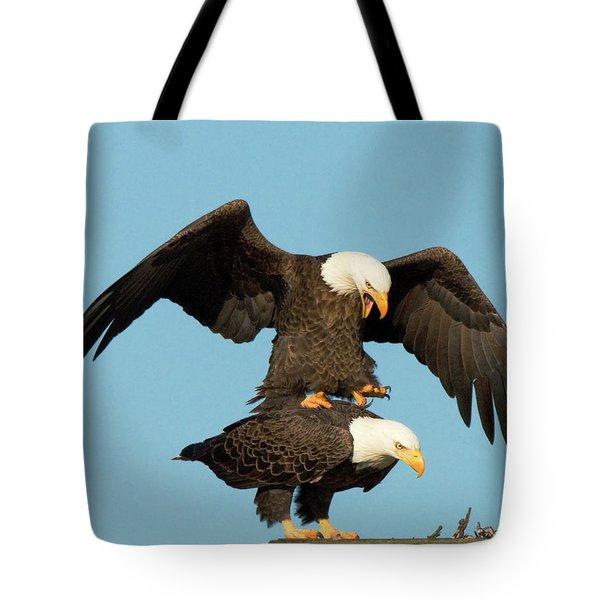 Bald Eagles Mating Tote Bag