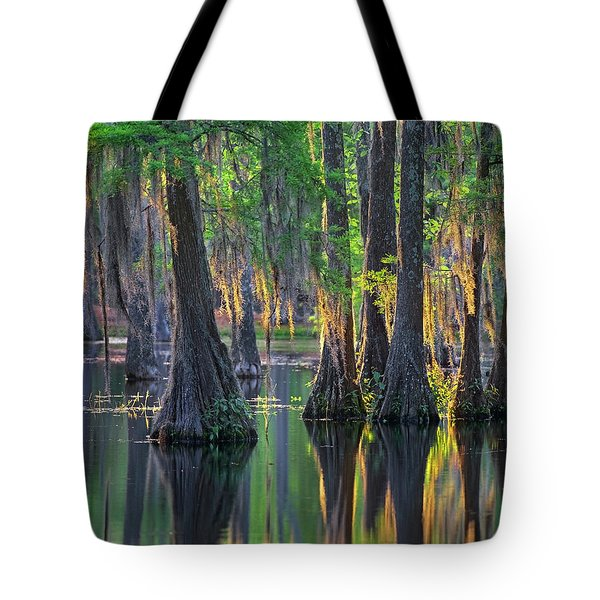 Baldcypress Trees, Louisiana Tote Bag
