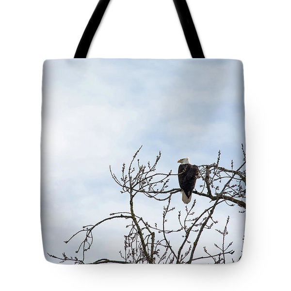 Tote Bag featuring the photograph Balk Eagle by Rebecca Cozart